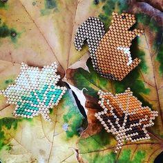 Créations d'automne #handmade #faitmain #miyuki #perlesmiyuki #perlesaddict #perles #feuilles #ecureuil #saison #colors #jewels #jenfiledesperlesetjassume #diy #perlesandco #broche #bijoux