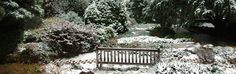 Monmouth County Parks Deep Cut Gardens in Middletown Monmouth County, County Park, Garden Bridge, Parks, Gardens, Outdoor Structures, Deep, Outdoor Decor, Outdoor Gardens