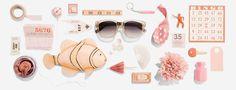 Warby Parker – Image - Lisa Hedge