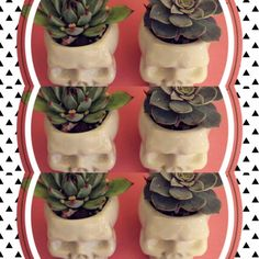 Happy Planter https://www.etsy.com/shop/HappyPlanters?ref=hdr_shop_menu skull, head, ceramic, succulents, planter, pot, gift, flag, message, love, bridesmaid gift, groomman gift