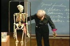 Berkley human anatomy course, free online - not really a book, but I definitely want to check it out.