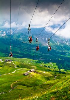 Incredible Travel Experiences: Zip Lining in Grindelwald, Switzerland... Looks AMAZING!!