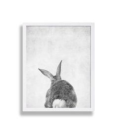 Set of 2 Animal Prints - Bunny Front and Bunny Tail (Choose any two animal prints from my shop) **Price includes two prints, the front and the back view** Take a look at over a hundred more nursery prints in our nursery decor shop. Nursery art makes for great personal gifts at baby