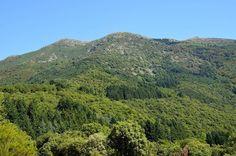 #turodelhome #montseny #senderismo #trekking #senderismodemontaña #mountaintrekking #freelife #freelifestyle #natureshots #naturelovers #buenasvibraciones #goodvibes #gypsysoul