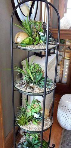 ideas-para-jardines-interiores (7) - Curso de organizacion de hogar aprenda a ser organizado en poco tiempo