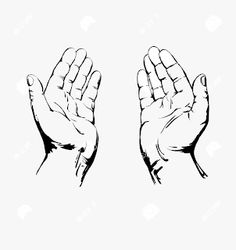 Best praying hands drawings - ideas and images on bing Praying Hands Drawing, Praying Hands Tattoo, Drawing Hands, Drawing Tips, Drawing Sketches, Drawings, Hand Reference, Drawing Reference, Illustration Main