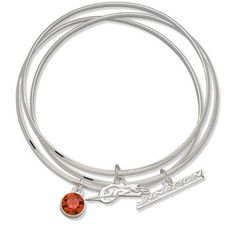 LogoArt Dale Earnhardt, Jr. JR Nation Crystal Bracelet - JR. NATION Each by Anderson. $30.77. Add the perfect accessory to your race day outfit with this Dale Earnhardt, Jr. JR Nation crystal bracelet set from LogoArt(r). The bangle bracelets have a silver-plated finish, E-coating and three charms, including a team-colored Preciosa(r) crystal.