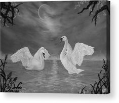 Swans Wood Print featuring the drawing Nocturnal Dance by Faye Anastasopoulou Wall Art Prints, Canvas Prints, Fine Art Posters, Thing 1, Dance Art, Swans, Print Pictures, Wood Print, Artist At Work