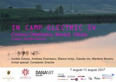 """The 4th edition of the """"Electric Field"""" art project, an article by Claudiu Victor Gheorghiu, 7th of August 2017"""