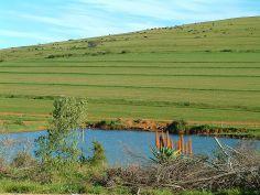 A dam scene near Mosselbay, South Africa.