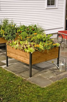 4' x 4' Elevated Cedar Planter Box - Gardener's Supply Company