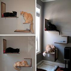 Jake And Karen's DIY Modern Cat Platforms