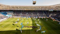 WIRSOL Rhein-Neckar Arena Soccer, Club, Sports, Hs Sports, Football, European Football, Sport, Soccer Ball, Futbol