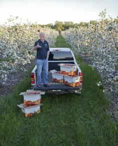 Apple grower Charles Stevens in his orchard near Newcastle, Ontario. He uses technology and innovation to protect apples against weather and pest damage.  http://www.foodandfarmingcanada.com/2013/07/04/innovations-protect-fruit-crops-against-weather-predator-damage/