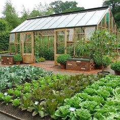 How to Plan a Bigger, Better Vegetable Garden