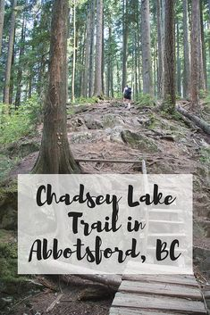 Gary and I were looking for a two hour hike in Abbotsford and several people recommended Chadsey Lake Trail on Sumas Mountain–how had I never heard of it before? Sumas Mountain has so many mountain biking trails and also some great hiking ones too! Mountain Bike Trails, Mountain Hiking, Hiking Trails, Places To Travel, Places To See, Vancouver Hiking, Abbotsford Bc, Canadian Travel, Visit Canada
