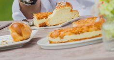 Scopri la prova tecnica della semifinale di Bake Off Italia: la ricetta della torta Bienenstich di Knam.