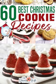 Get to holiday baking with these 70  MUST try Best Christmas Cookies recipes featuring chocolate, peppermint, cinnamon and so many more festive holiday flavors! As a finale to our Week of Christmas Cookies here at The Gracious Wife, I've gathered up 72 of the best Christmas Cookies recipes from around the web.  Enjoy! And happy baking! | The Gracious Wife @thegraciouswife #christmascookies #christmasbaking #holidaycookies #thegraciouswife Best Christmas Cookie Recipe, Christmas Party Food, Holiday Cookies, Christmas Desserts, Christmas Treats, Christmas Recipes, Holiday Recipes, Holiday Ideas, Best Dessert Recipes