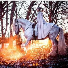 Ever dream of riding a magical white horse into the sunset? Swedish folklore photographer Vilja Lingonren.