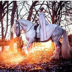 Ever dream of riding a magical white horse into the sunset? Swedish folklore photographer Vilja Lingonren.