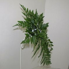 Learn how to make wedding bouquets, matching corsages and boutonnieres, reception centerpieces and church decorations. Buy wholesale flowers and discount florist supplies. Daisy Bouquet Wedding, Diy Wedding Flowers, Outdoor Flowers, All Flowers, Cut Flower Food, Florist Supplies, Free Wedding, Flower Tutorial, Easy Diy