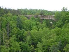 Natural Bridge - KY I have a picture we took just like this and one of my daughter and I standing in the middle of that bridge. You are very high up in the air.