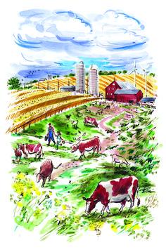 #DanWilliams #farm #cattle #cows #country #farming #illustration #lindgrensmith
