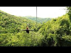 Asheville NC Zipline Adventure   100-percent tree based tour   Navitat - Navitat