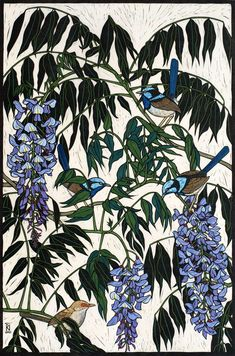 WISTERIA & BLUE WRENS 74 X 49 CM    EDITION OF 50 HAND COLOURED LINOCUT ON HANDMADE JAPANESE PAPER $1,400