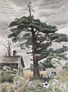CHARLES BURCHFIELD The Pine Tree