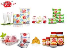 Dairy Products in India – The Traditional Types and Their Benefits