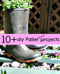 10 + #Diy #Free #Pallet projects
