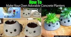 DIY How to Make Your Own Cute Concrete Planters