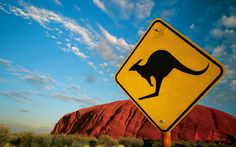 Trek through the Australian outback and to Ayers Rock. Ayers Rock Australia, Gone In 60 Seconds, Australia Kangaroo, Abstract Art For Sale, Widescreen Wallpaper, Wallpapers, Worldwide Travel, Wanderlust Travel, Along The Way