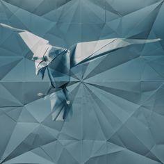 Marc Fichou's origami photographs