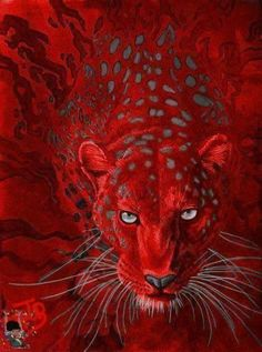 colours are music for the eyes Afrique Art, I See Red, Simply Red, Red Aesthetic, Color Of Life, World Of Color, Red And Grey, Shades Of Red, Belle Photo