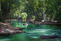 フリー写真, フリー写真, CC0 写真, 風景(写真), 自然, 森林, 河川