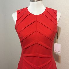 NWT Calvin Klein Dress! Red! This is one of my favorite dresses! I own it in a few other colors in the size I wear today! It is in perfect condition and brand new! Calvin Klein Dresses
