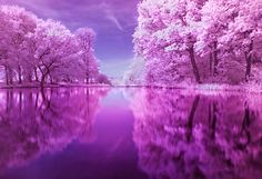 zekkeibeautifulscenery:    Zekkei Beautiful Breathtaking Scenery 世界の絶景