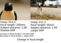 10-depth-of-field.jpg