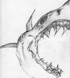 Megalodon Jaws Drawing