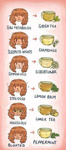 funny-tea-time-metabolism-sleepless_zps47a4385f.jpg Photo by HomesteadSurvival   Photobucket