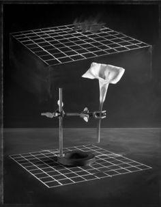 John Chervinsky, 'The Analysis,' 2005, Light Work