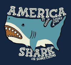 Sharks are the number one predator around