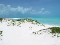 White (Sandy) Cay, Exuma. The treasure chest (Pirates of the Caribbean) was burried here!