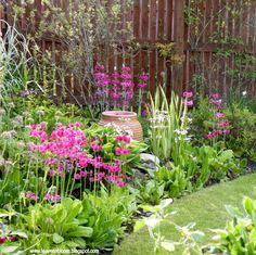 The Greenhouse Space Saver - Leavesnbloom Gardening & Photography Garden Ideas Uk, Garden Design Plans, Flower Garden Design, Garden Inspiration, North Facing Garden, North Garden, Boarder Plants, Small English Garden, Gardening Photography