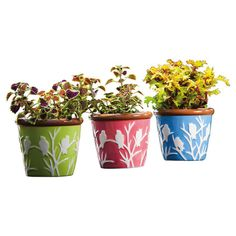 Adorned with a delightful perching bird motif, this ceramic planter brims with charming appeal.  Product: Set of 3 planters...