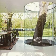 Stunning design that changed the way se look at things #architecture #archilovers #home #tree #nature #naturelovers #homedesign #livingroom #interior #interiordesign #casa #villa