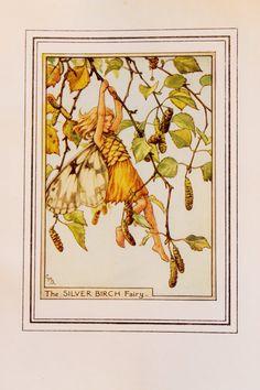 Silver Birch Fairy Original impresión de hadas de flores