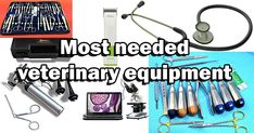 MOST NEEDED VETERINARY EQUIPMENT